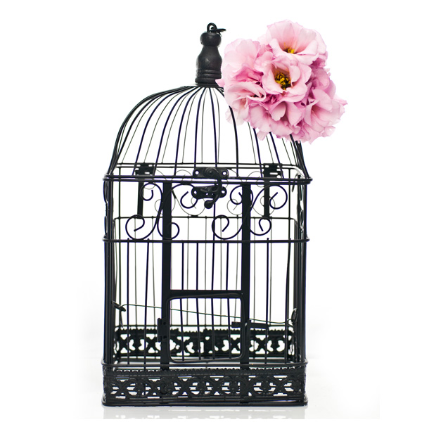 Wedding bombonieres and wedding invitations - bird cage wishing well