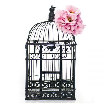 Black bird Cage Wishing Well- Large