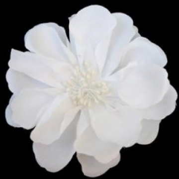 Large Blossoming Flower