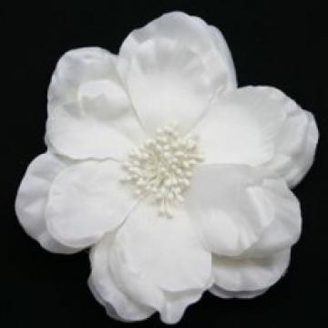Large White Poppy Flower