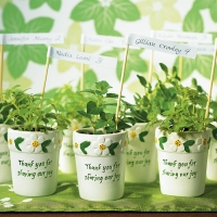 Mini Flower Pots - Pack of 6