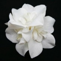 Multi-orchids White Fabric flower